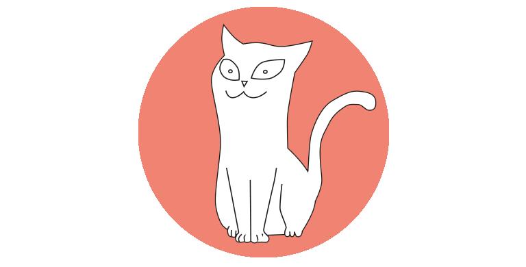 Eine Katze